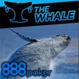 888 Poker Super Whale Torneio Edição Especial