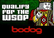 Download Bodog Poker