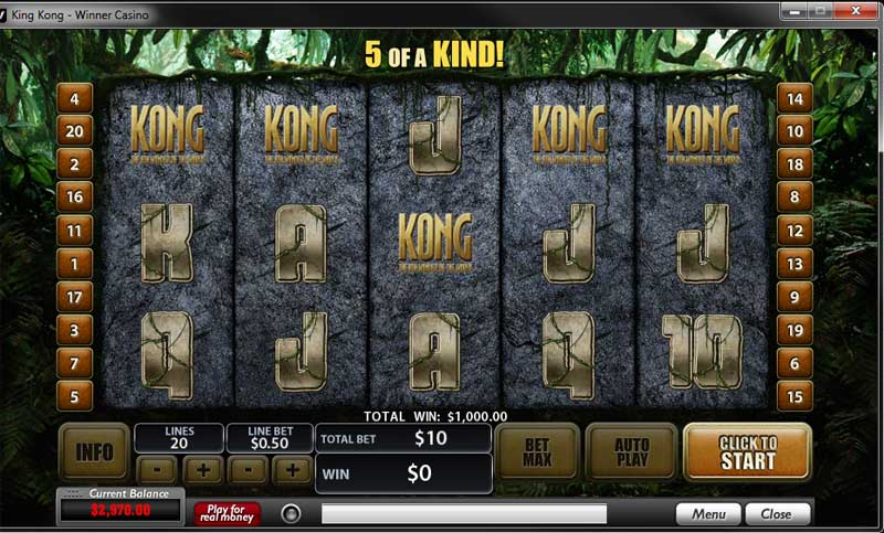 online casino winner hot spiele