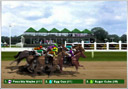 Virtual corrida - horse racing + virtual greyhound at Party-Casino